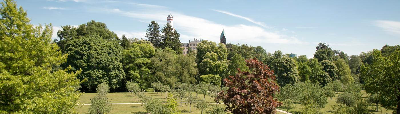 Schlosspark – Bad Homburg v. d. Höhe